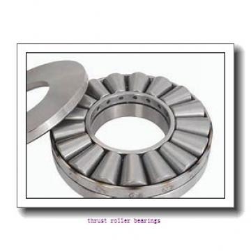 INA WS89313  Thrust Roller Bearing